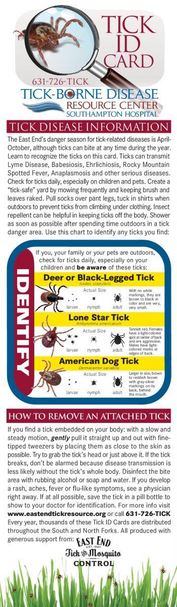 Tick Types on Long Island