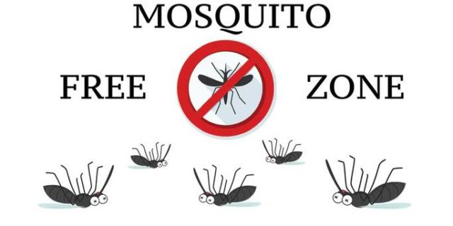 Dead cartoon mosquitoes on a white background.