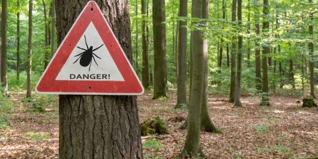 """A """"Danger"""" sign for ticks."""